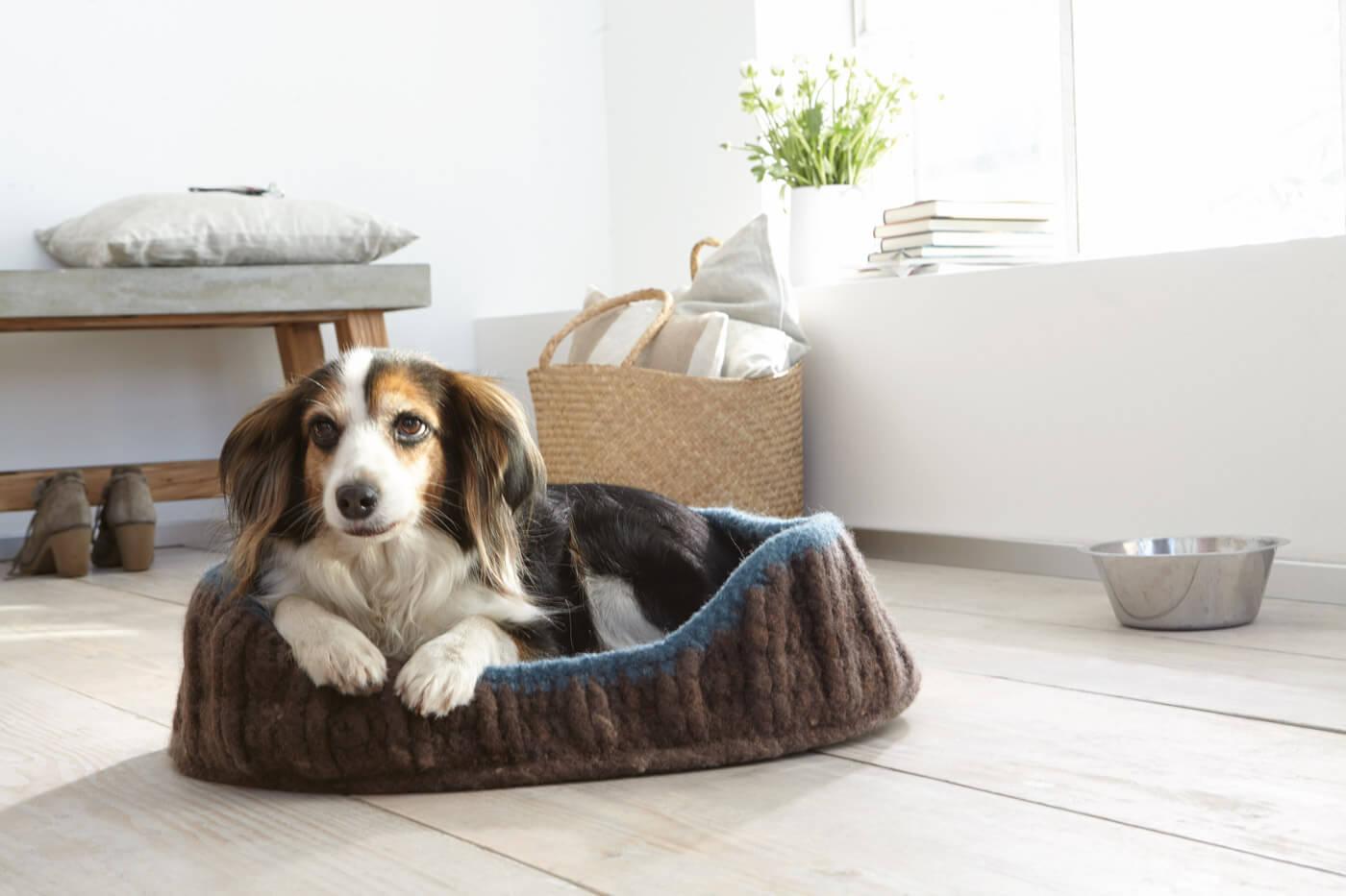 Korb für Hunde, Katzen und andere Haustiere