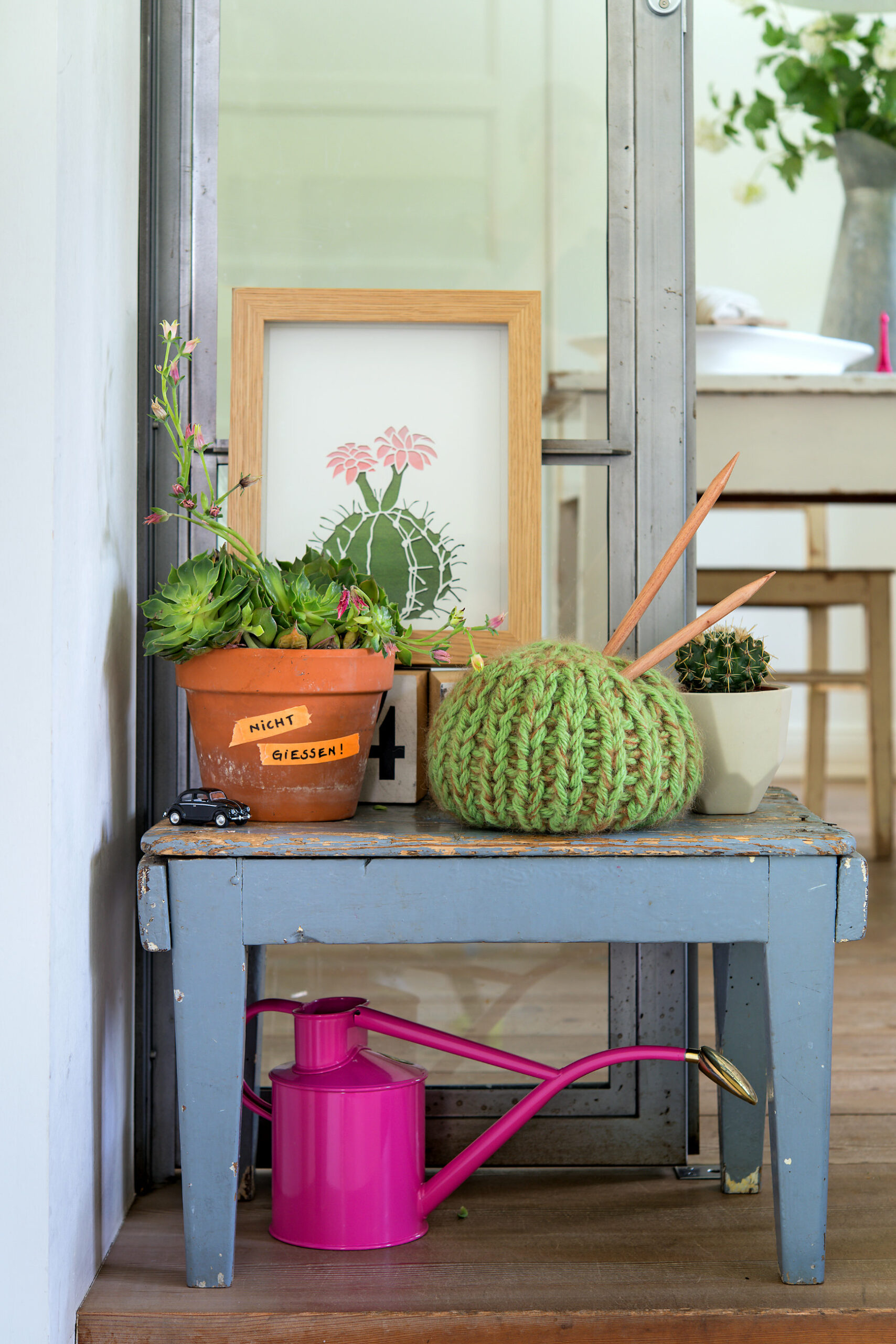 Strick-Kaktus